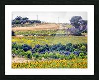 Sunflower Landscape Picture Frame print