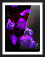 Evening Flowers Picture Frame print