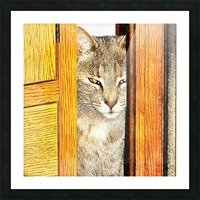 Looking From The Other Side Picture Frame print