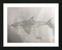 Shark Image Picture Frame print
