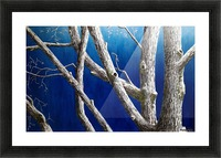 Trees at Dusk Picture Frame print