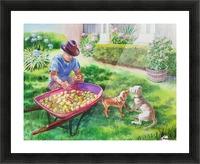 Apples Harvest Picture Frame print