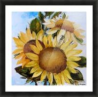 Floarea soarelui Picture Frame print