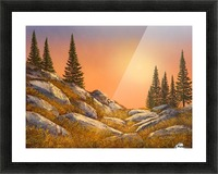 Sunset Spruces Picture Frame print