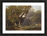A wooded landscape Picture Frame print