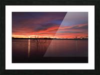 Wellington City Lake Sunset Picture Frame print