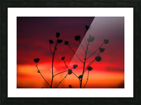 Liberty Sunset Picture Frame print
