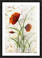 Red poppies 004 Edit Voros  Picture Frame print