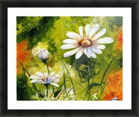 White Daisies 005 Picture Frame print