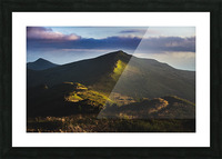 Morning trail Picture Frame print