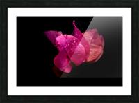 Subtlety Picture Frame print