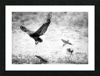 AdriaanPrinsloo 7140 Picture Frame print