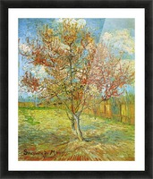 Pink Peach Tree in Blossom Reminiscence of Mauve by Van Gogh Picture Frame print
