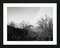 California Clouds through Mountain Brush in B&W Picture Frame print