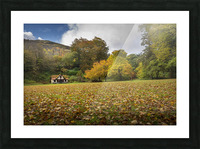 Autumn at Craig-y-Nos Country park  Picture Frame print