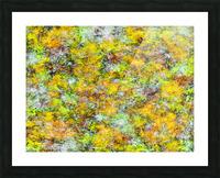 Scrambled eggs Picture Frame print