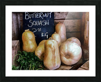 Butternut Squash Sale Display Picture Frame print