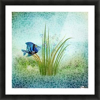 Billy the fish Picture Frame print