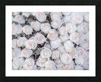 Full frame of Roses Picture Frame print