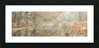Canal through a forest Picture Frame print