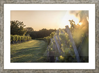 Lussac Picture Frame print