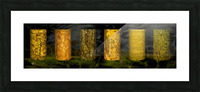 tree bark sentinels Picture Frame print
