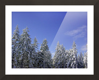 First Snow Picture Frame print