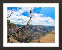 Wild Kauai 2 Picture Frame print
