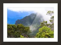 Wild Kauai 3 Picture Frame print