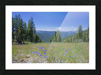 Sierra Nevada in Spring 7 of 8 Picture Frame print