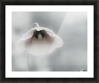 Ephemeral Beauty Picture Frame print