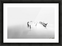 Into the mist Picture Frame print