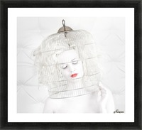 birdcage love Picture Frame print