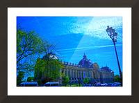 Petit Palais 8th Arrondissement Paris Picture Frame print