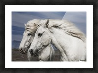 Blowing by Bragi Ingibergsson Picture Frame print