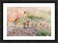 Let's Go Mom Picture Frame print