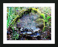 Tiny World 7 of 8 Picture Frame print