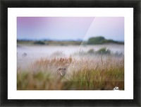 Hide and seek Picture Frame print