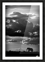 He walks under an African Sky by WildPhotoArt   Picture Frame print