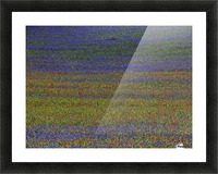 get lost Picture Frame print