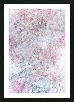 Daltana Pastel Floral Dianola Picture Frame print