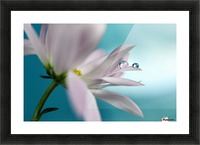 In turquoise Company Picture Frame print