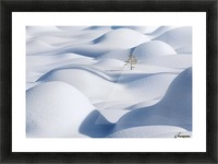 Standing in the Waves Picture Frame print