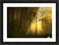Yellow Picture Frame print