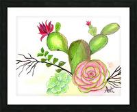 Flowering Cactus  Picture Frame print