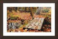 Passage oblige   Picture Frame print