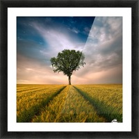 One by Piotr Krol (Bax) Picture Frame print