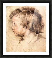 Son Albert by Rubens Picture Frame print