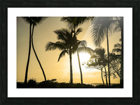 Through the Palms Picture Frame print