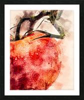 Tomato Picture Frame print